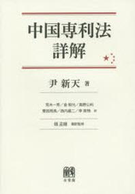 中國專利法詳解
