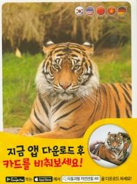 자연관찰 AR 카드. 1