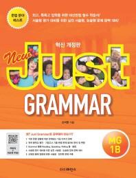 New Just Grammar. MG 1B