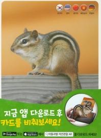 자연관찰 AR 카드. 2