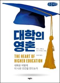대학의 영혼(큰글씨책)