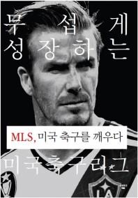 MLS, 미국 축구를 깨우다