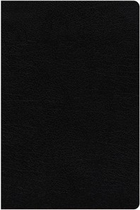 NIV Study Bible, Fully Revised Edition, Large Print, Bonded Leather, Black, Red Letter, Thumb Indexed, Comfort Print