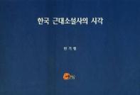 한국 근대소설사의 시각