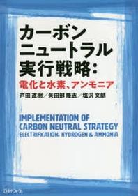 カ-ボンニュ-トラル實行戰略:電化と水素,アンモニア