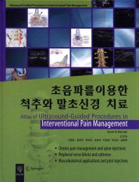 초음파를 이용한 척추와 말초신경 치료