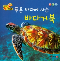 푸른 바다에 사는 바다거북