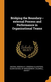 Bridging the Boundary--External Process and Performance in Organizational Teams