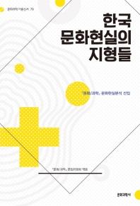 한국 문화현실의 지형들