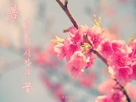 봄, 연애의 시작과 끝