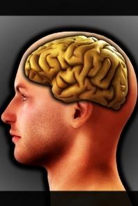 독(讀)해야 이긴다: 지식인, 책읽기로 삶을 완성하다