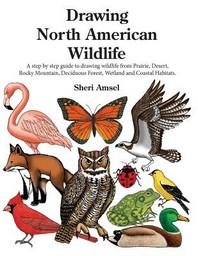 Drawing North American Wildlife