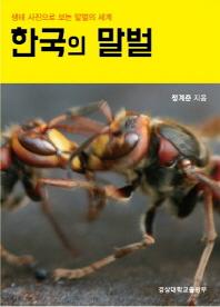 한국의 말벌