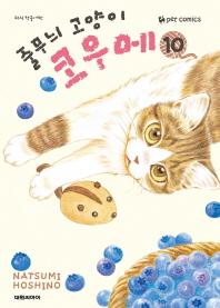 줄무늬 고양이 코우메. 10