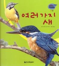 새. 21: 여러 가지 새