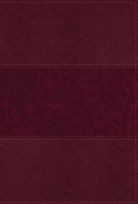 NIV Study Bible, Fully Revised Edition, Large Print, Leathersoft, Burgundy, Red Letter, Thumb Indexed, Comfort Print