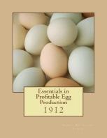 Essentials in Profitable Egg Production