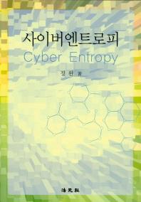 사이버 엔트로피
