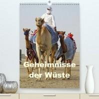 Geheimnisse der Wueste (Premium, hochwertiger DIN A2 Wandkalender 2020, Kunstdruck in Hochglanz)