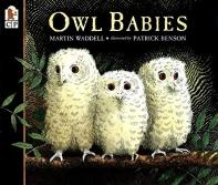 Owl Babies (보드북)