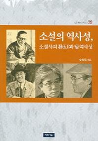 소설의 역사성 소설사의 환과 탈역사성 (청동거울 문화점검 35)