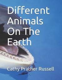 Different Animals On The Earth