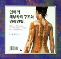 인체의 해부학적 구조와 경락경혈