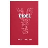 Y-Bibel - Youcat