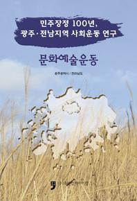 민주장정100년, 광주 전남지역 사회운동 역사  문화예술운동