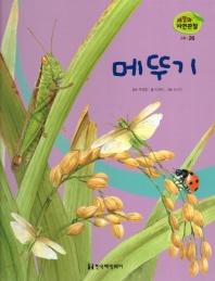 곤충. 26: 메뚜기