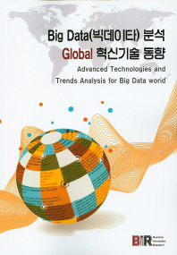 Big Data(빅데이타) 분석 Global 혁신기술 동향