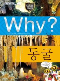 Why? 동굴