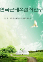 한국 근대소설사연구