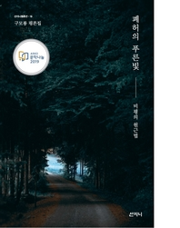 폐허의 푸른빛 : 비평의 원근법-산지니 평론선15