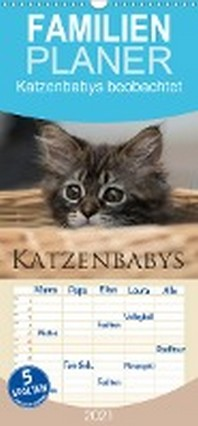 Katzenbabys beobachtet - Familienplaner hoch (Wandkalender 2021 , 21 cm x 45 cm, hoch)