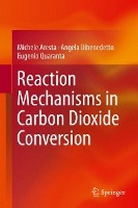 Reaction Mechanisms in Carbon Dioxide Conversion
