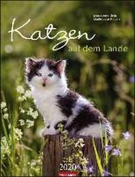 Katzen auf dem Lande - Kalender 2020