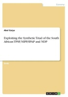 Exploiting the Synthetic Triad of the South African TPSP, NIPP/IPAP and NDP