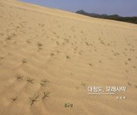 대청도, 모래사막