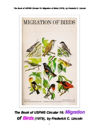 북미에서의 철새들의 이동. The Book of USFWS Circular 16: Migration of Birds (1979), by Frederick C.