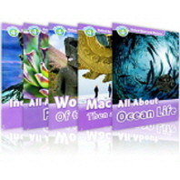 Read and Discover 4 Pack