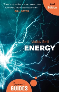 Energy: A Beginner's Guide (Beginner's Guides)