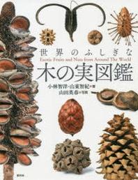 世界のふしぎな木の實圖鑑