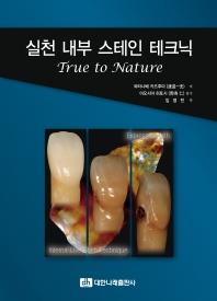 실천 내부 스테인 테크닉