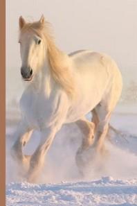 Winter Wonderland - Beautiful White Horse Running in the Snow