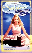 Sabrina, the Teenage Witch #1 : A Novelization Based on the Hit TV Series