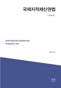 국제지적재산권법