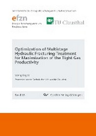 Optimization of Multistage Hydraulic Fracturing Treatment for Maximization of the Tight Gas Productivity (Band 58)