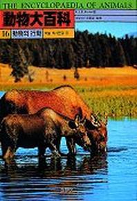 동물대백과 16(동물의 행동:구애.학습.의사전달 등)