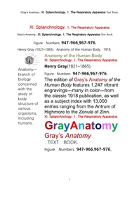 그레이아나토미 해부학의 제11권 1부 호흡기학 텍스트책.Gray's Anatomy.. XI. Splanchnology. 1. The Respiratory Apparatus Text Book,by Henry Gray